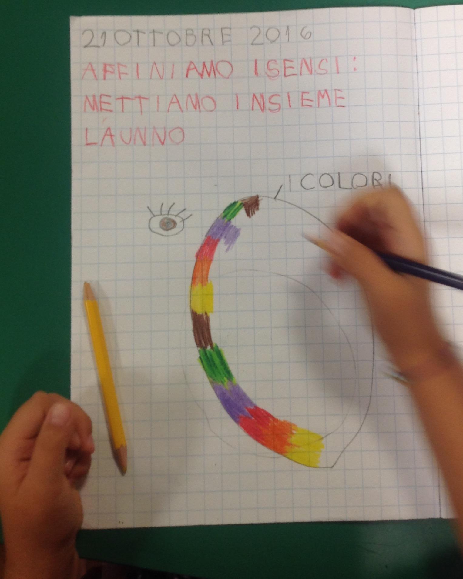 Top Unità di apprendimento: L'autunno e i cinque sensi | La finestra  RX13